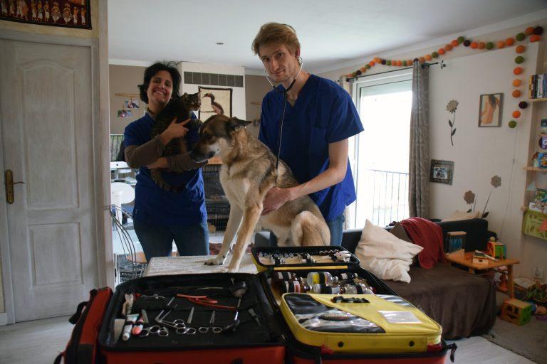 Vet in Vienne – Urgences Vétérinaires de nuit à domicile – Vienne et aux alentours –
