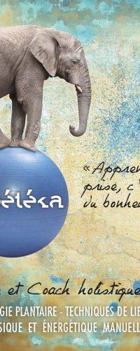 PEBETEKA – Kinésiologue et coach holistique de l'Être
